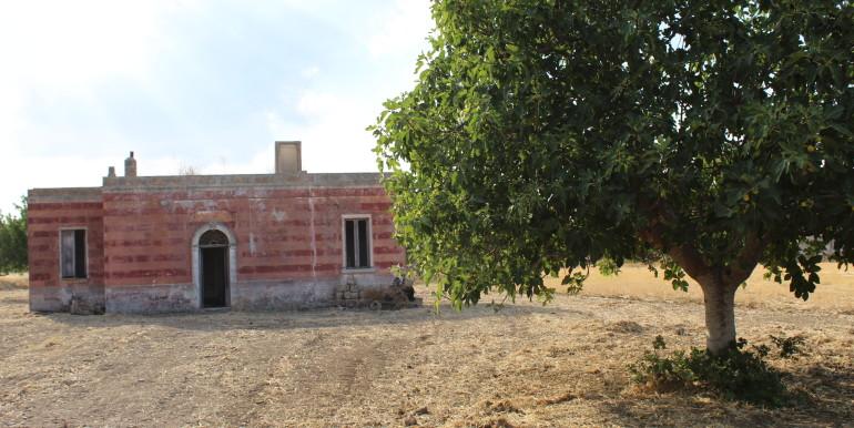 1 campagna Francavilla Fontana (1)