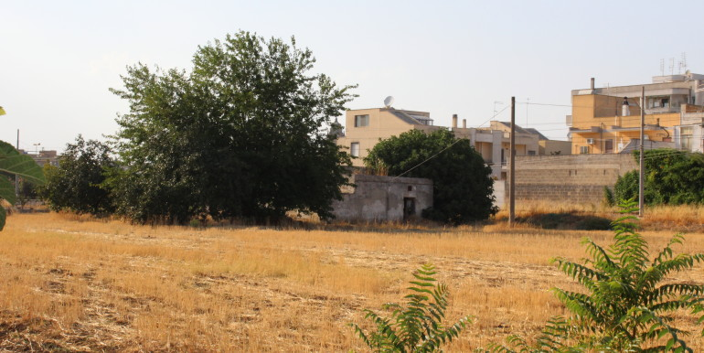 19 campagna Francavilla Fontana (19)